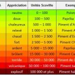 echelle-de-Scotville
